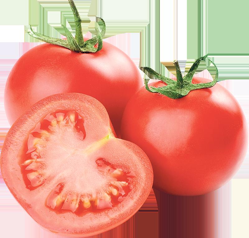 Rajčica domaća